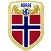 Norwegen trikot 2018