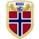 Norwegen Trikot 2016