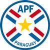 Paraguay trikot 2018