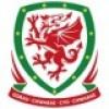 Wales trikot kinder 2021